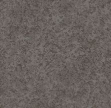 Shaw Floors Value Collections State Of Mind Net Grounded Grey 00536_5E373