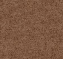 Shaw Floors Value Collections State Of Mind Net Sunbaked 00650_5E373