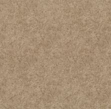 Shaw Floors Value Collections State Of Mind Net Natural Beauty 00721_5E373