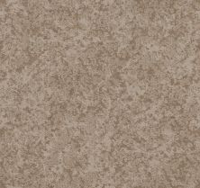 Shaw Floors Value Collections State Of Mind Net Sandstone 00743_5E373