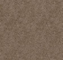 Shaw Floors Value Collections State Of Mind Net Tumbleweed 00749_5E373