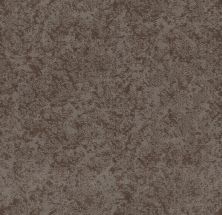 Shaw Floors Value Collections State Of Mind Net Ridgeview 00751_5E373