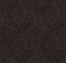 Shaw Floors Value Collections State Of Mind Net Burma Brown 00752_5E373
