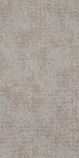 Shaw Floors Value Collections Artistic Presence Net Cold Winter 00126_5E374