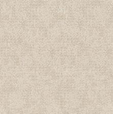 Shaw Floors Value Collections Artistic Presence Net Delicate Cream 00156_5E374