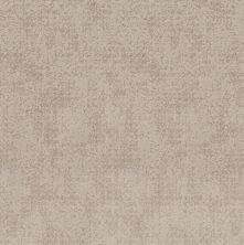 Shaw Floors Value Collections Artistic Presence Net Sandstone 00743_5E374