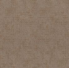 Shaw Floors Value Collections Artistic Presence Net Tumbleweed 00749_5E374