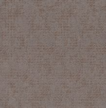 Shaw Floors Value Collections Artistic Presence Net Ridgeview 00751_5E374