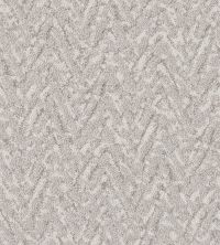Shaw Floors Value Collections Lavish Living Net Minimal 00514_5E375
