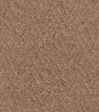 Shaw Floors Value Collections Lavish Living Net Sunbaked 00650_5E375