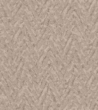 Shaw Floors Value Collections Lavish Living Net Natural Beauty 00721_5E375