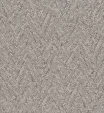Shaw Floors Value Collections Lavish Living Net Stucco 00724_5E375