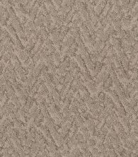 Shaw Floors Value Collections Lavish Living Net Tumbleweed 00749_5E375