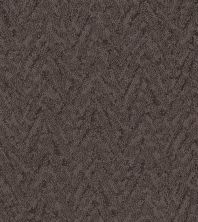 Shaw Floors Value Collections Lavish Living Net Burma Brown 00752_5E375