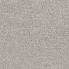 Shaw Floors Value Collections Crafting Design Net Cold Winter 00126_5E377