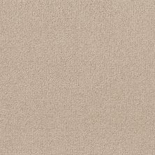 Shaw Floors Value Collections Crafting Design Net Natural Beauty 00721_5E377