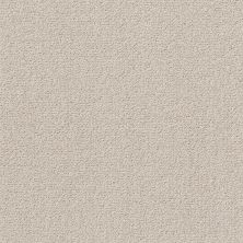 Shaw Floors Value Collections Crafting Design Net Sandstone 00743_5E377
