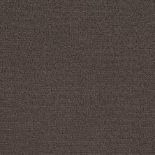 Shaw Floors Value Collections Crafting Design Net Burma Brown 00752_5E377