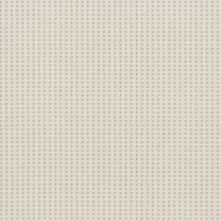 Shaw Floors Value Collections Soft Symmetry Net Delicate Cream 00156_5E378