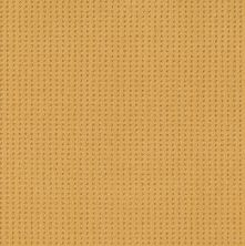 Shaw Floors Value Collections Soft Symmetry Net Turmeric 00250_5E378