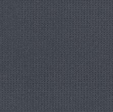 Shaw Floors Value Collections Soft Symmetry Net Deep Sea 00433_5E378