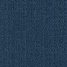 Shaw Floors Value Collections Soft Symmetry Net Ocean Villa 00436_5E378