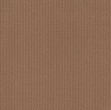 Shaw Floors Value Collections Soft Symmetry Net Sunbaked 00650_5E378