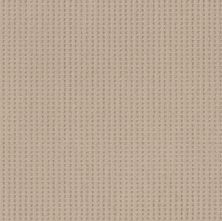 Shaw Floors Value Collections Soft Symmetry Net Natural Beauty 00721_5E378