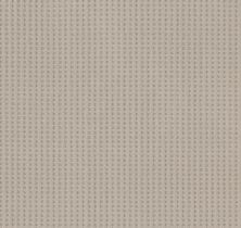 Shaw Floors Value Collections Soft Symmetry Net Sandstone 00743_5E378
