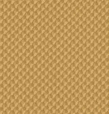 Shaw Floors Value Collections Inspired Design Net Turmeric 00250_5E379