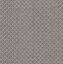 Shaw Floors Value Collections Inspired Design Net Grounded Gray 00536_5E379