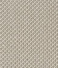 Shaw Floors Value Collections Inspired Design Net Sandstone 00743_5E379