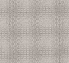 Shaw Floors Value Collections Serene Key Net Cold Winter 00126_5E380