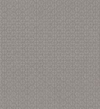 Shaw Floors Value Collections Serene Key Net Grounded Grey 00536_5E380