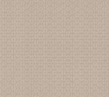 Shaw Floors Value Collections Serene Key Net Natural Beauty 00721_5E380