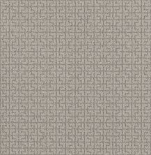 Shaw Floors Value Collections Serene Key Net Stucco 00724_5E380
