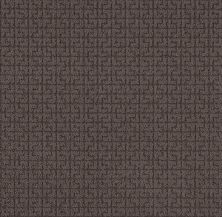 Shaw Floors Value Collections Serene Key Net Burma Brown 00752_5E380