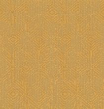 Shaw Floors Value Collections Vintage Revival Net Turmeric 00250_5E381