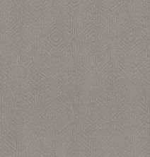 Shaw Floors Caress By Shaw Vintage Revival Net Grounded Gray 00536_5E381