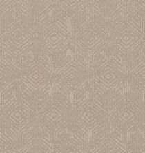 Shaw Floors Value Collections Vintage Revival Net Natural Beauty 00721_5E381