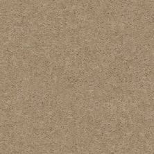 Shaw Floors Value Collections Heroic Net Artisan Craft 00101_5E386
