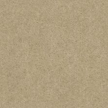 Shaw Floors Value Collections Heroic Net Spanish Sand 00106_5E386
