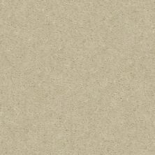 Shaw Floors Value Collections Heroic Net Coconut Twist 00114_5E386