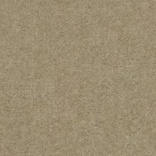 Shaw Floors Value Collections Heroic Net Chateau 00116_5E386