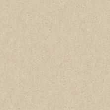 Shaw Floors Value Collections Heroic Net Silk Thread 00143_5E386