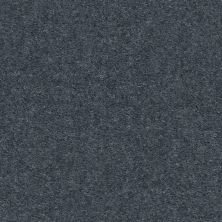 Shaw Floors Value Collections Heroic Net Steele Blue 00490_5E386