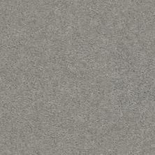 Shaw Floors Value Collections Heroic Net Shadow 00590_5E386