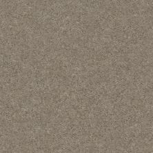 Shaw Floors Value Collections Heroic Net Free Spirit 00790_5E386