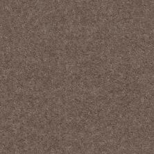 Shaw Floors Value Collections Heroic Net Chic Taupe 00791_5E386