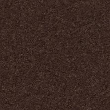Shaw Floors Value Collections Heroic Net Truffle 00792_5E386